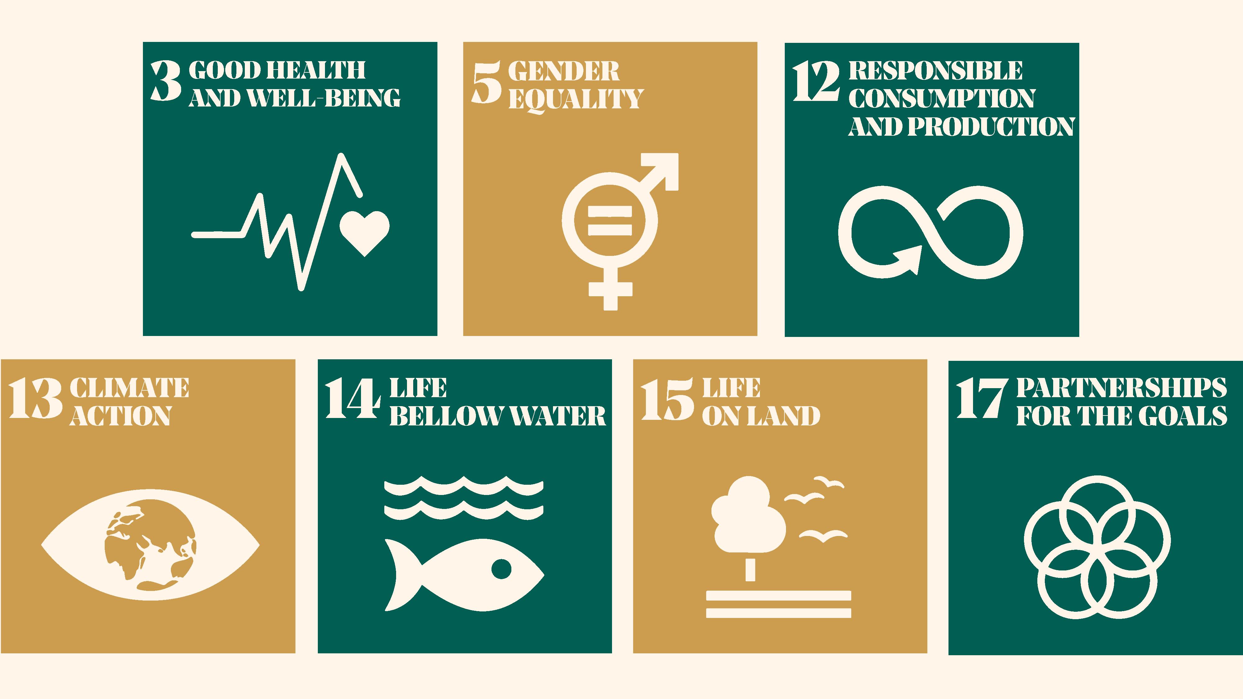 RDB UN SDGs
